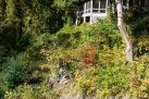 Grist Mill Cottage