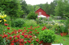 Vegetable and Herb Garden Tour and Tasting